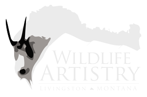 Wildlife Artistry, LLC